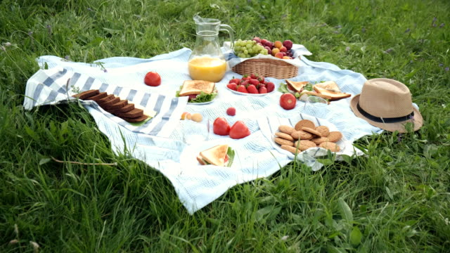 summer picnic on the grass with an open picnic basket, fruit, with toasted sandwiches and berries. picnic tablecloth. summer picnic on the grass with an open picnic basket, fruit, with toasted sandwiches and berries. picnic tablecloth picnic stock videos & royalty-free footage