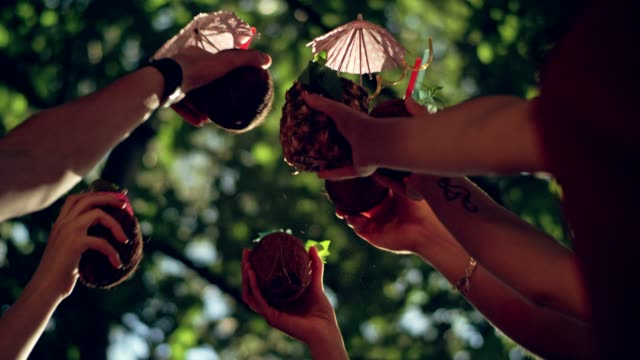 Summer toast at the party Group of friends celebrating at summer party coconut palm tree stock videos & royalty-free footage