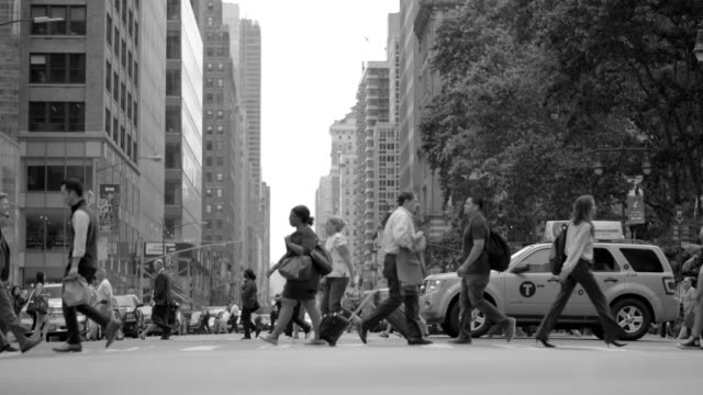 Summertime in the Streets of New York City. Huge Crowds of People Walking Over Crosswalk. New York City with Good Weather and People on the Streets. free stock without watermark stock videos & royalty-free footage
