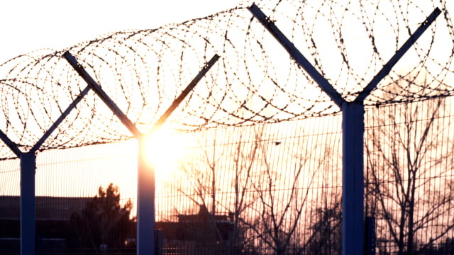 Sun and trees through metal fence with barbed wire. Guardrail, jail, restraint Sun and trees through metal fence with barbed wire. Guardrail, jail, restraint. Cold winter day military private stock videos & royalty-free footage
