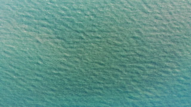 Sun and water texture graphic element. Drone aerial shot of water looking straight down. Waves and sunlight beams on crystal clear sea water on infinite ocean. Endless water waves graphic element. caustic light effect stock videos & royalty-free footage