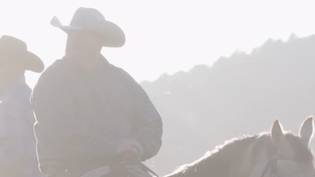 sun flares lens tilt up through horses legs to rancher sitting on his horse ready to work - rancher video stock e b–roll