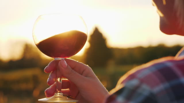 Sun rays in a glass of red wine. The hand holds a glass against the background of the vineyard and the setting sun