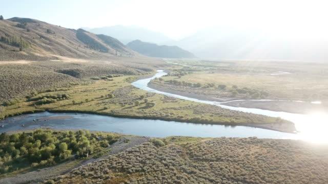 sun reflecting off of stream running through meadow in california - дикая местность стоковые видео и кадры b-roll