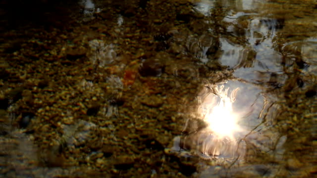 Sun reflection on water surface video