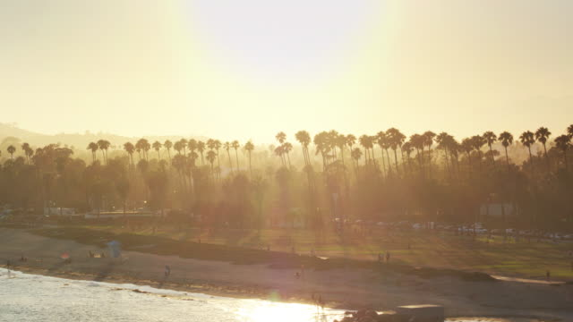 Sun Setting Behind Palm Trees in Santa Barbara, California - Aerial Shot video
