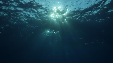 vídeos de stock e filmes b-roll de sunbeam shining through sea surface underwater, maldives - mar