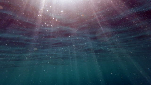 Sunbeams streaming through the Ocean surface underwater point of view of the sea