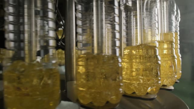Sunflower oil in the bottle moving on production line. video