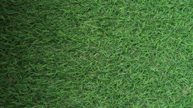 Sunlight drop shadow on green Artificial grass lawn field