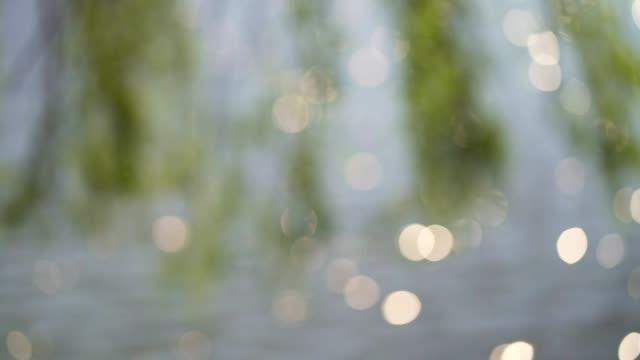 Sonnenlicht glitzert auf der Seeoberfläche – Video