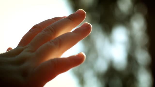 Sunlight in Hand video