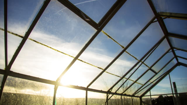 Sunlight on a Greenhouse