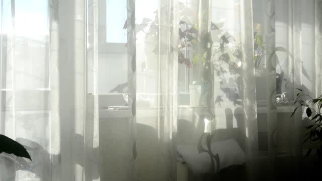 sonnenlicht scheint durch das fenster mit lichtgitter - wohngebäude innenansicht stock-videos und b-roll-filmmaterial