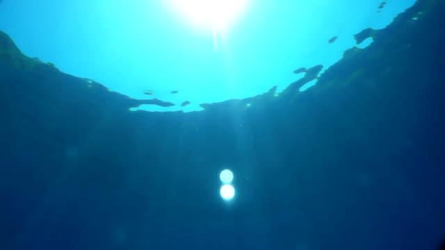 sunlight under the surface of azure water efekty świetlne słońca z głębin lazurowej wody. podwodny świat diving to the ground stock videos & royalty-free footage