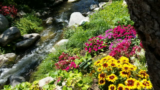 4K Sunny brook with flowers and shade video