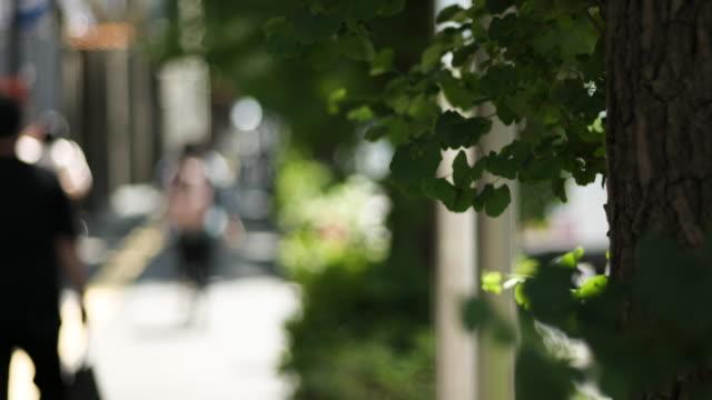 サニー・街並み - 豊かなライフスタイル点の映像素材/bロール