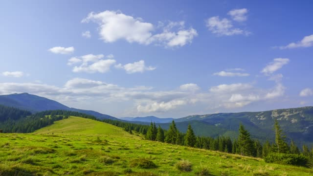 Sunny Day on a Mountain Pasture. Time Lapse Summer wooded mountains. Sunny day. Glade with green grass. Clouds run fast. Time lapse pasture stock videos & royalty-free footage