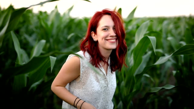 Sunny landscape in cornfield Attractive woman with red hair looking at camera, walking through cornfield on sunset and smiling dyed red hair stock videos & royalty-free footage