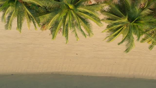 晴れたサムイ島のビーチライン空中トップダウンパノラマ4kタイ - サムイ島点の映像素材/bロール