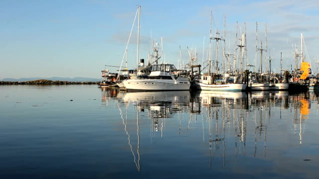 Sunny Steveston Marina video