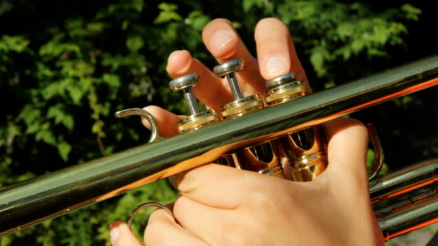 Sunny trumpet fingers. video