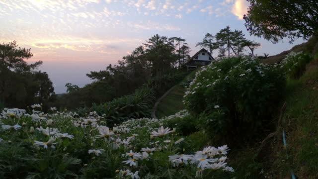 vídeos de stock e filmes b-roll de sunrise at huai nam dang national park in thailand - maio