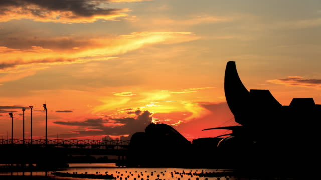 夜明けのマリーナベイシンガポール - 美術館点の映像素材/bロール