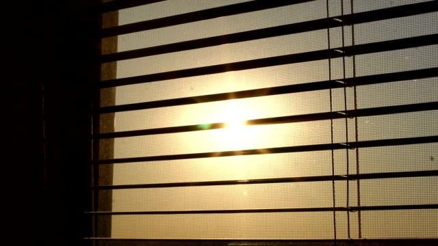 vídeos de stock e filmes b-roll de sunrise behind the window blinds and mosquito net. - castanho