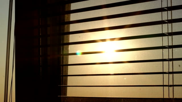 Sunrise behind the window blinds and mosquito net.