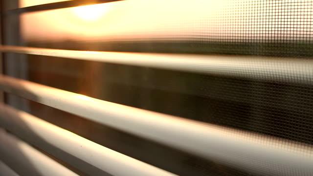 sonnenaufgang hinter dem fenster-vorhänge und moskitonetz. - moskitonetz stock-videos und b-roll-filmmaterial