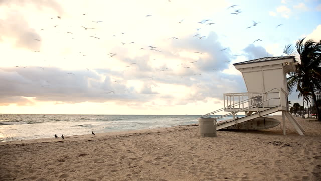 Sunrise in Fort Lauderdale, Florida video