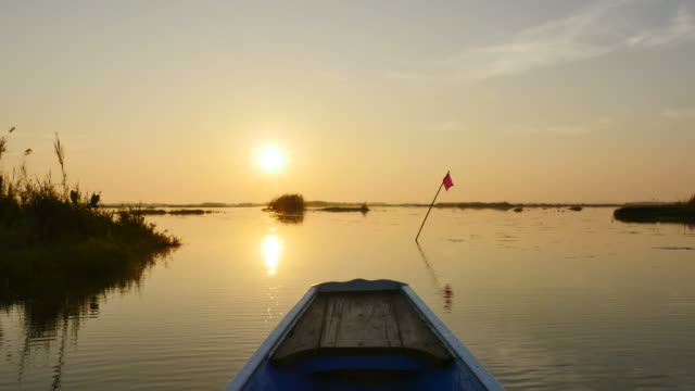 sunrise in morning on boat trip at pink lotus lake, udon thani province, thailand. - пруд стоковые видео и кадры b-roll