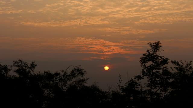 sunrise nature video