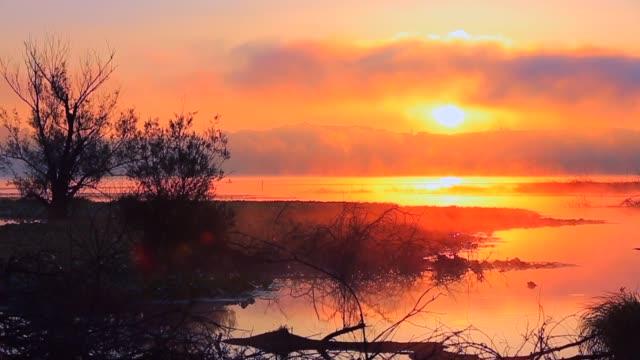 Sunrise on a lake in a summer foggy morning
