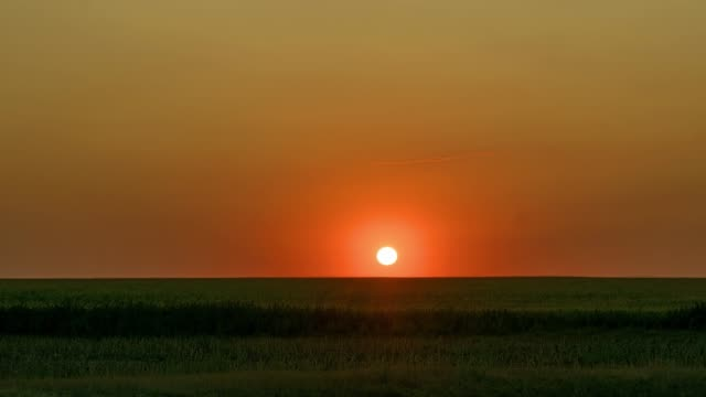 sunrise on wheat field time lapse dawn in the steppe time lapse, sunrise in prairie, sunrise over field, morning sun over the field horizon over land stock videos & royalty-free footage