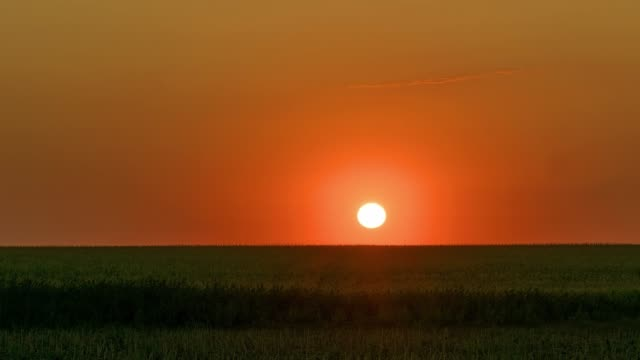 soluppgång över fält tidsfördröjning - sunrise bildbanksvideor och videomaterial från bakom kulisserna