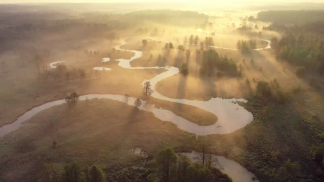 Sunrise over foggy river from above. Bright sunrays on misty river on meadow. Summer nature aerial