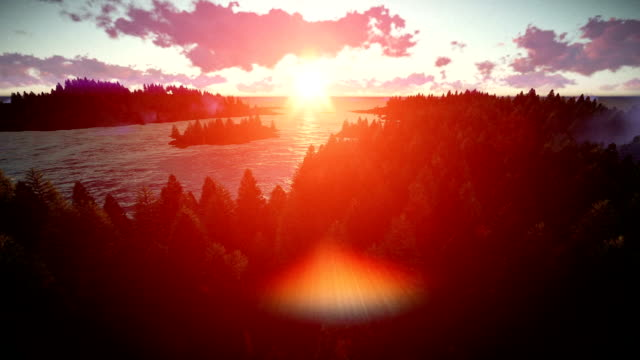 Sunrise over forest hills and sea video