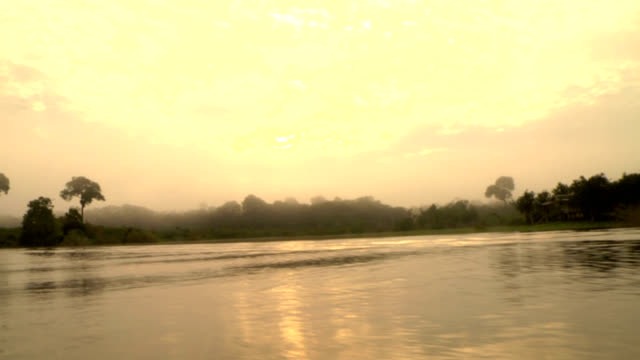 Sunrise Over the Amazon River video