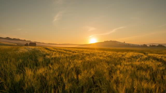 t e l'alba sopra la campagna toscana - fattoria video stock e b–roll