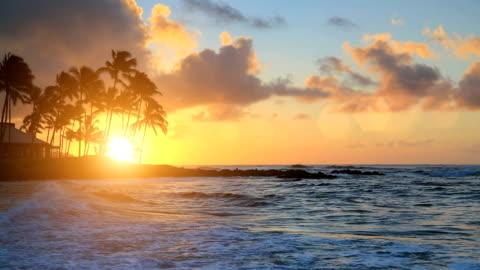 alba sopra l'acqua di kauai, hawaii - isola video stock e b–roll