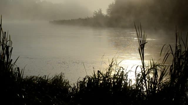 sunrise reflection river video
