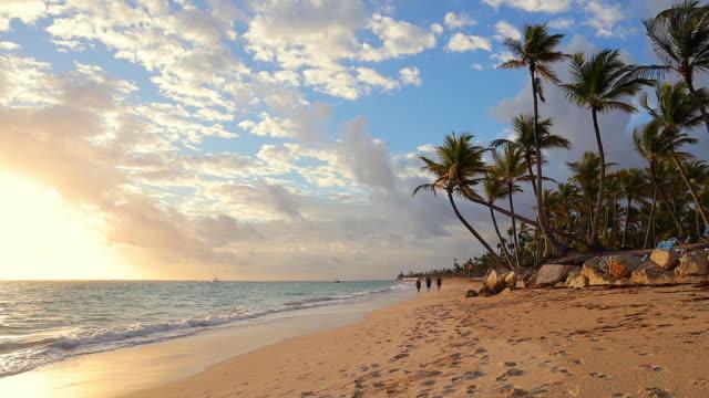 Sunrise, sea and tropical island beach Punta Cana, Dominican republic. Palm trees around