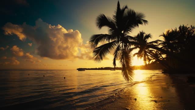 日の出海のビューと熱帯の島のビーチ プンタカナ、ドミニカ共和国で ビデオ