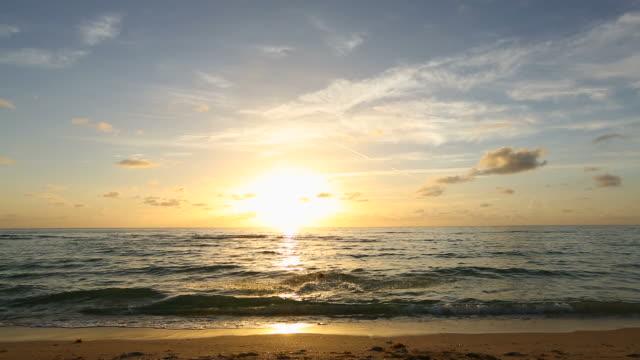 Sunrise Sunset Swimmer video