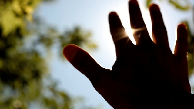 Sun's rays through fingers palm video