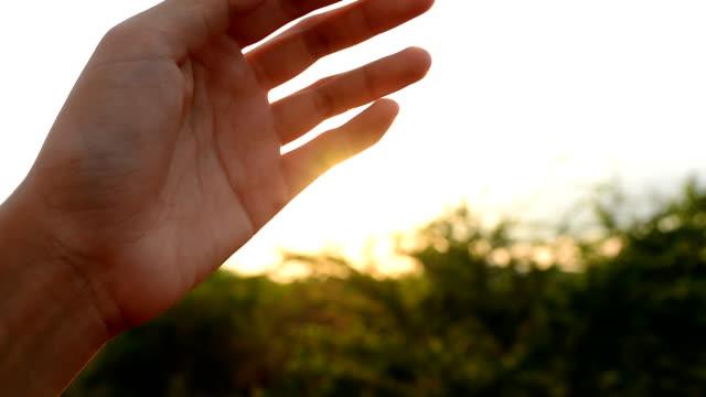 Sun's rays through fingers palm video