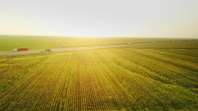 sunset aerial shot of i-5 cutting across central valley farmland - aerial agriculture stock videos & royalty-free footage