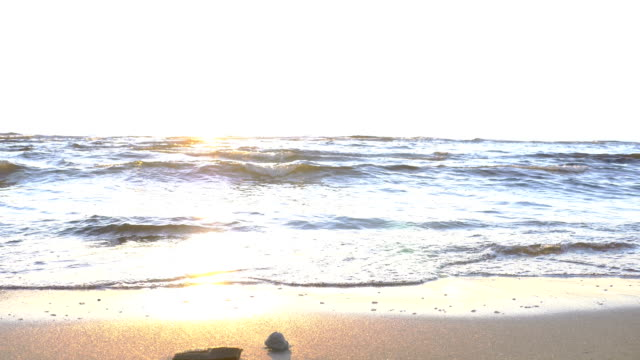 Sunset at  Baltic beach video